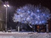 zima1